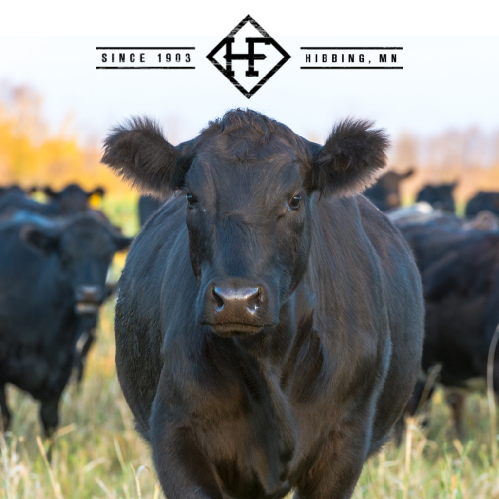 Helstrom Farms Minnesota grass fed beef
